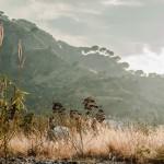 Landscapes 28