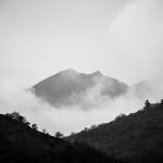 Landscapes 54